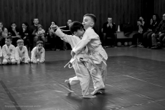 Открытый чемпионат Киева по айкидо